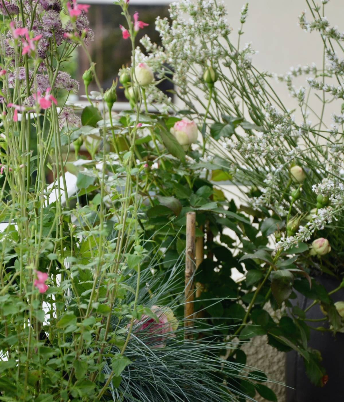 Atelier-Jardin • Créatrice d'ambiances végétales & Garden Designer •